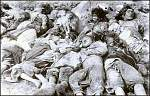 armenian genocide 440[1]