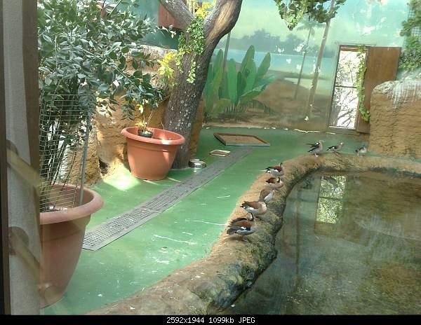 Увлекательный выезд в зоопарк :)-220720092760.jpg
