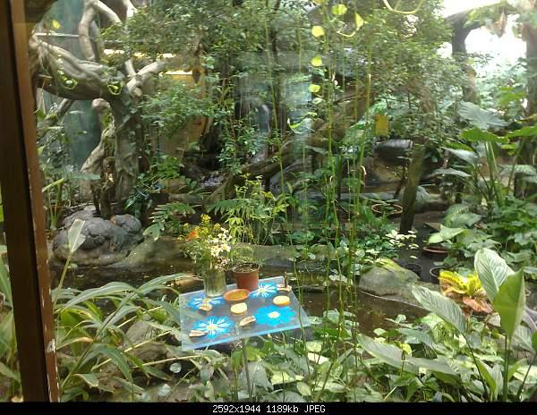 Увлекательный выезд в зоопарк :)-220720092761.jpg
