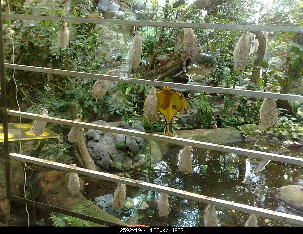 Увлекательный выезд в зоопарк :)-220720092764.jpg