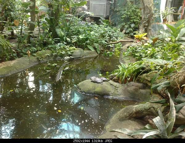 Увлекательный выезд в зоопарк :)-220720092766.jpg