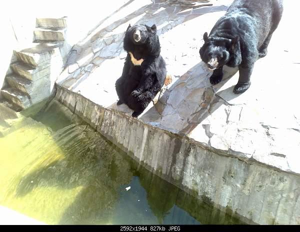 Увлекательный выезд в зоопарк :)-220720092741.jpg