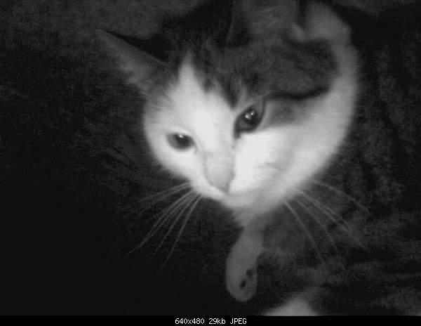 Я всегда с собой беру... фотокамеру!-20060103204033.jpg