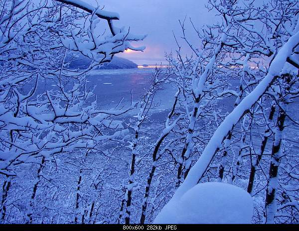 Beautiful photos from around the world.....-384-800.jpg