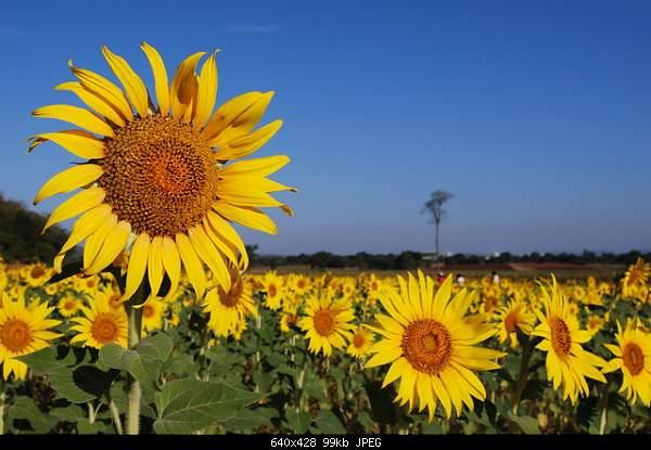 Beautiful photos from around the world.....-2304.jpg