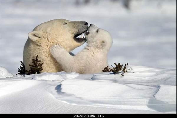 Beautiful photos from around the world.....-image008.jpg