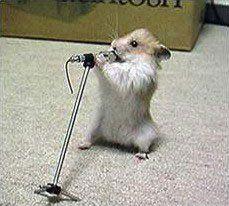 singingmouse.jpg (14.0 KB, )