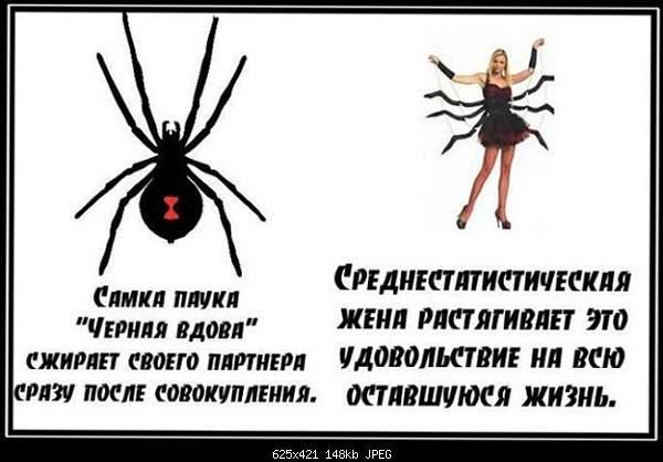 Философское-demotivator110t110.jpg
