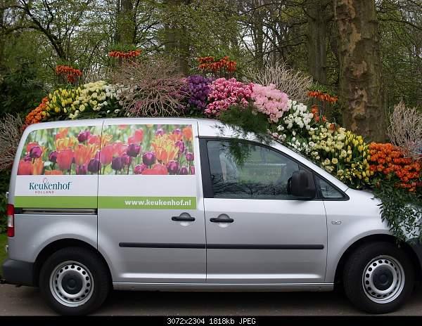 Цветочный парк Keukenhof Holland-sdc10680.jpg