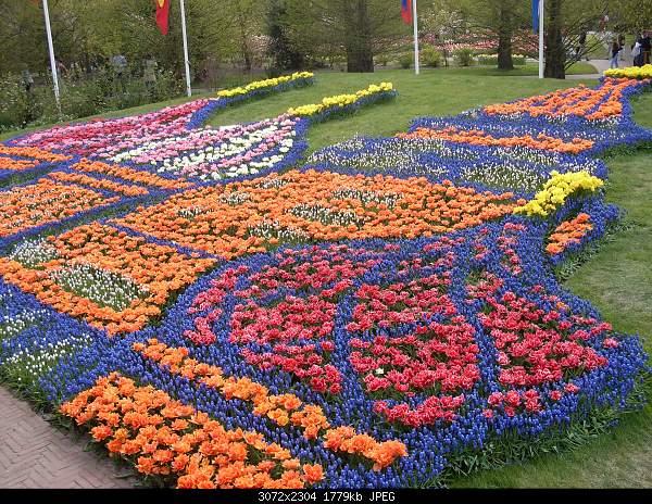 Цветочный парк Keukenhof Holland-sdc10739.jpg