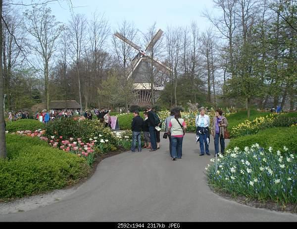 Цветочный парк Keukenhof Holland-dsc08014.jpg