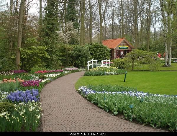 Цветочный парк Keukenhof Holland-dsc08095.jpg