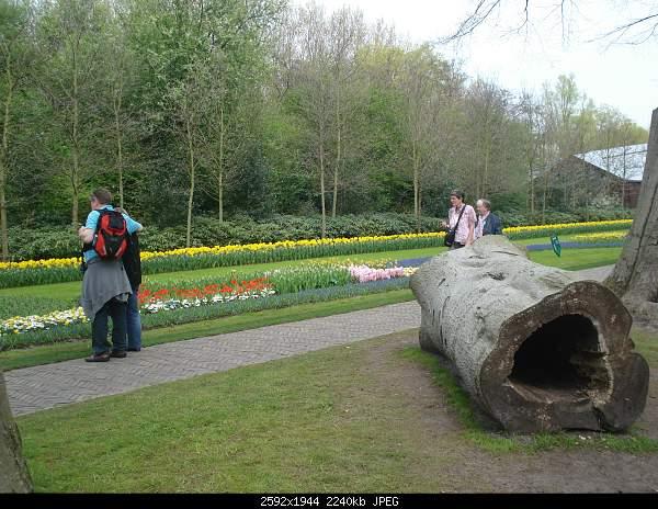 Цветочный парк Keukenhof Holland-dsc08066.jpg