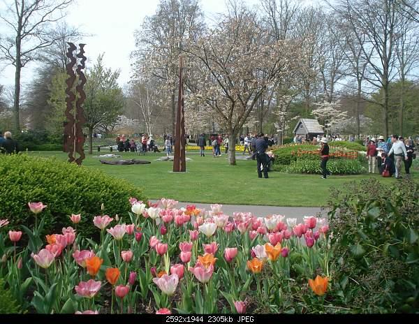 Цветочный парк Keukenhof Holland-dsc08017.jpg