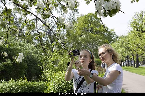 Девушки и цветы-1105479.jpg