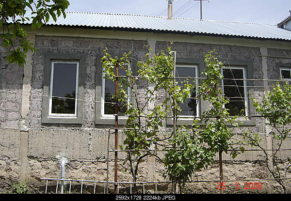 House and garden - my real estate in Armenia 79999EUR Дом и сад моя недвижимость в Армении-dsc02160.jpg