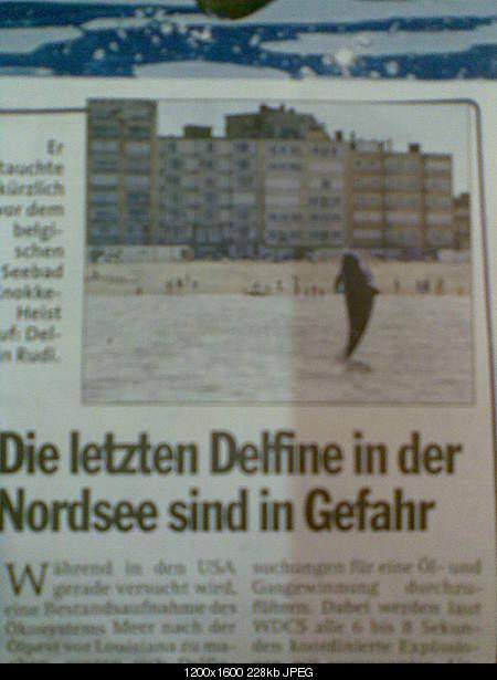 Дельфины в опасности...-bild005.jpg