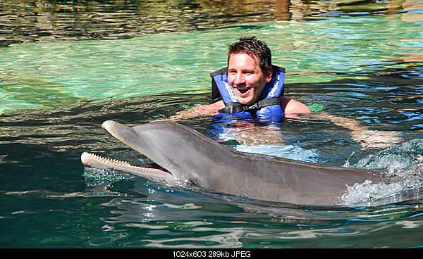 Дельфины в опасности...-4856558209_884e07ca9f_b.jpg