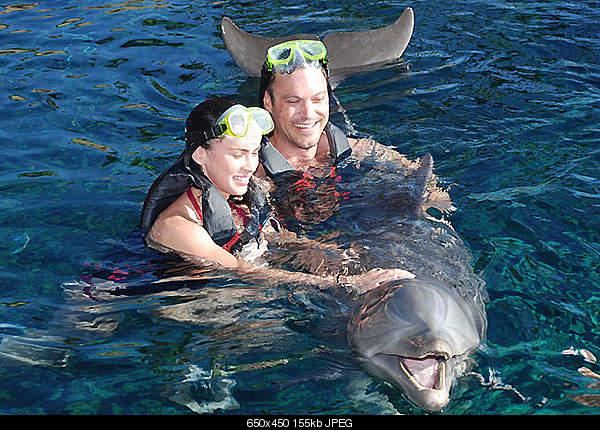 Дельфины в опасности...-megan.jpg