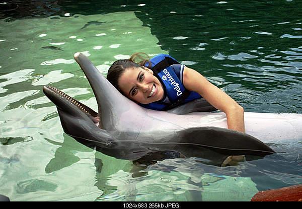 Дельфины в опасности...-4756294442_438cf9324f_b.jpg