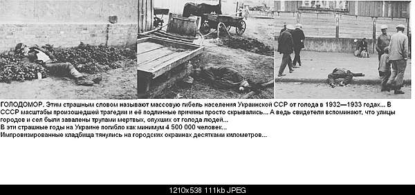 Фотографии, которые потрясли мир.-1919-431.jpg