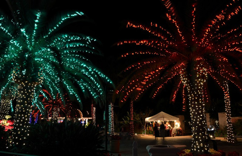 Sunday December 5, 2010 Largo, FL.jpg (141.5 KB, )