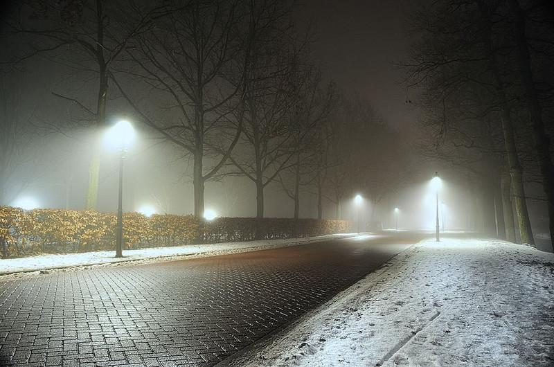 Monday December 6, 2010 Oostwold , Netherlands.jpg (139.8 KB, )