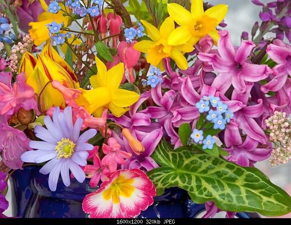 С первым днем весны! =)-spring_flowers.jpg