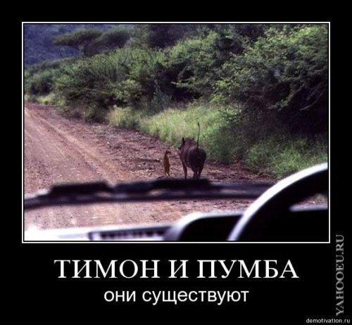 168985_165262696857887_100001224733385_423005_2496278_n.jpg (50.0 KB, )