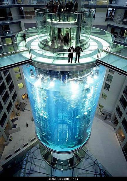 Самый большой аквариум-2huge.jpg