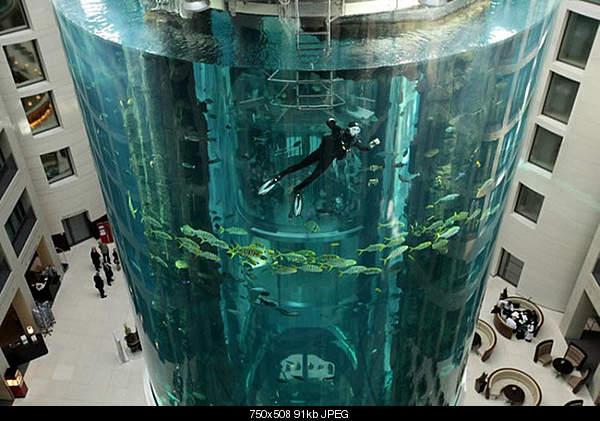 Самый большой аквариум-0huge.jpg