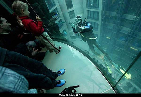 Самый большой аквариум-1huge.jpg