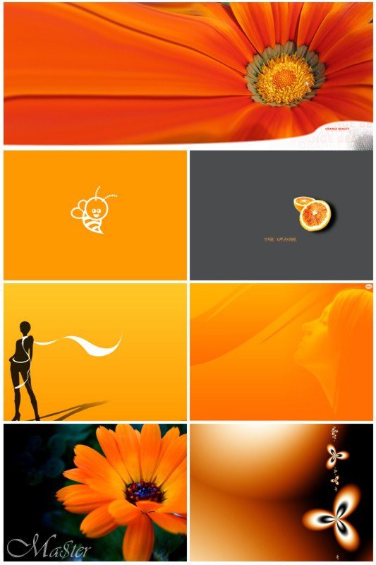 1196412566_orange.jpg (83.2 KB, )