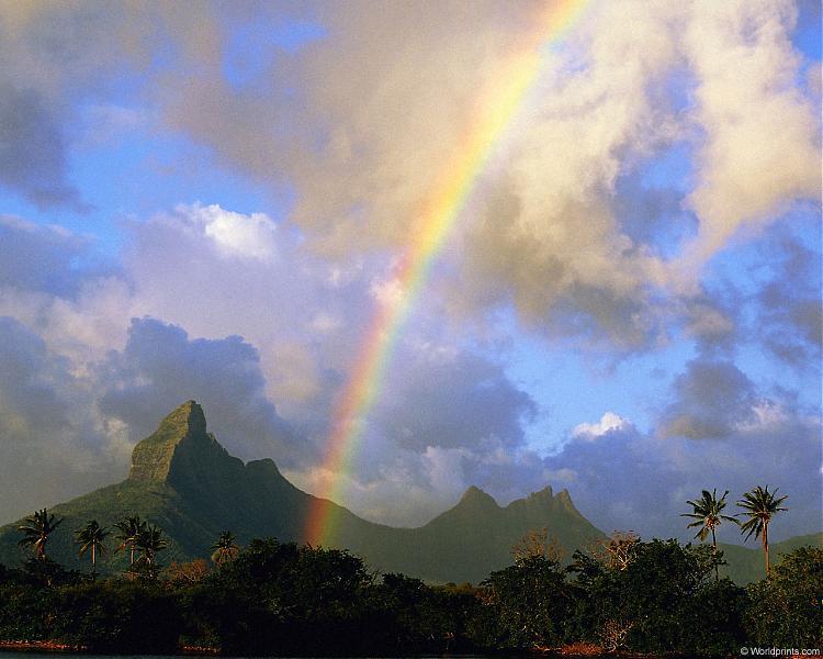 mauritius_rainbow.jpg (58.5 KB, )